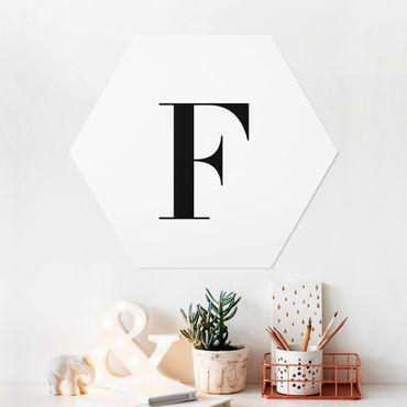 Esagono in forex - Lettera Serif Bianco F