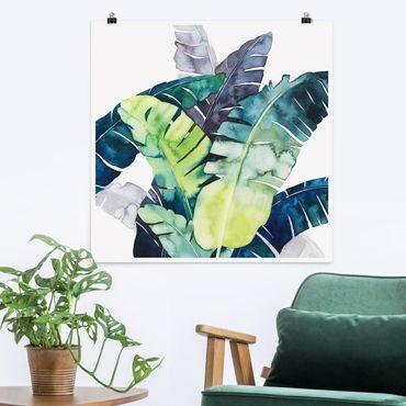 Poster - Exotic Foliage - Banana - Quadrato 1:1
