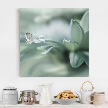 Stampa su tela - Farfalla E Gocce di rugiada In Pastel Verde - Quadrato 1:1