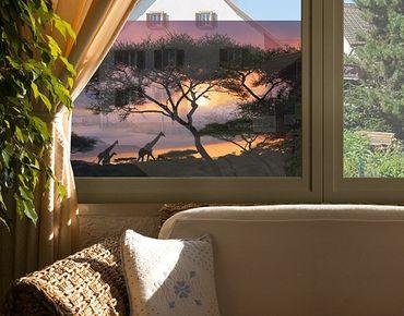 Decorazione per finestre Safari In Africa