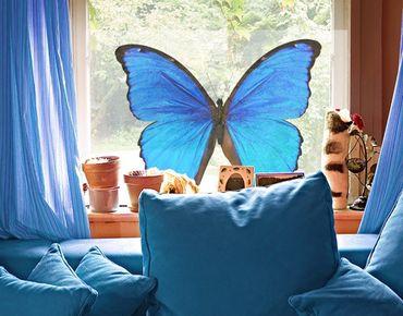 Decorazione per finestre Blue Morpho