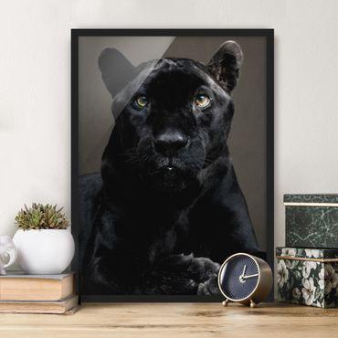 Poster con cornice - Black Puma - Verticale 4:3