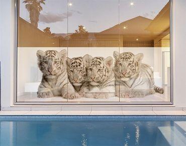 Decorazione per finestre Bengal Tiger Babies