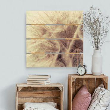 Stampa su legno - Dettagliata Dandelion Macro Shot con sfocatura effetto vintage - Quadrato 1:1