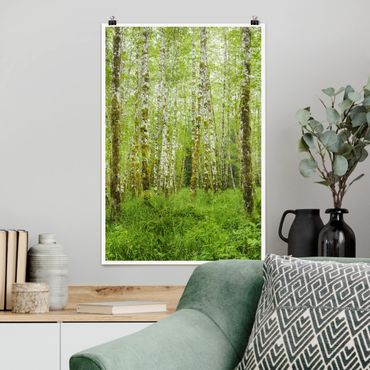 Poster - Hoh Rain Forest nel Parco Nazionale olimpica - Verticale 3:2