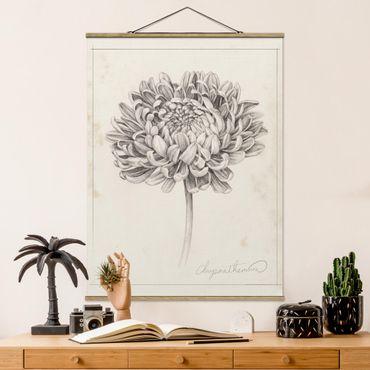 Foto su tessuto da parete con bastone - Botanical Study II Crisantemo - Verticale 4:3