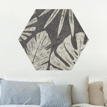 Esagono in forex - Foglie di palma contro un grigio scuro