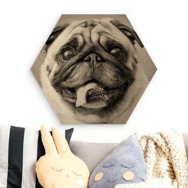 Esagono in legno - divertente Pug