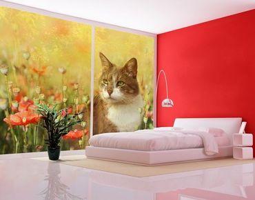 XXL Pellicola per vetri - Cat In Poppy Field