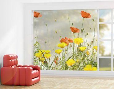 XXL Pellicola per vetri - Wild Flowers