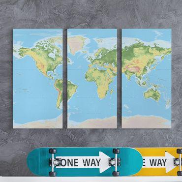 Stampa su tela 3 parti - Physical World Map - Verticale 2:1