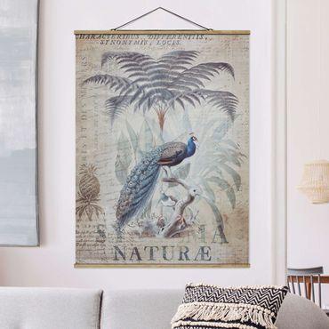 Foto su tessuto da parete con bastone - Shabby Chic Collage - Peacock - Verticale 4:3