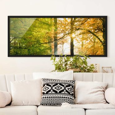 Poster con cornice - Morning Light - Panorama formato orizzontale