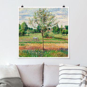 Poster - Camille Pissarro - Prato con la muffa - Quadrato 1:1