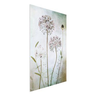 Quadro in forex - fiori Allium a pastello - Verticale 2:3