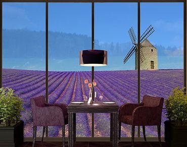 XXL Pellicola per vetri - The Scent Of Lavender In The Provence