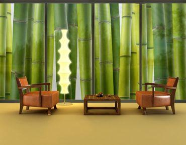 XXL Pellicola per vetri - Bamboo Plants