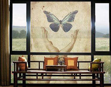 XXL Pellicola per vetri - Fly, Butterfly