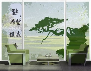 XXL Pellicola per vetri - no.CG79 Chinese Signs