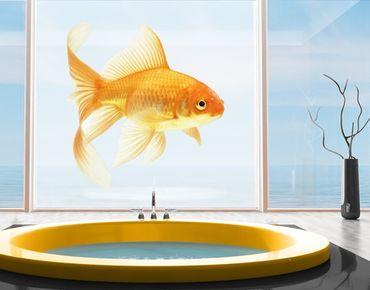 XXL Pellicola per vetri -  Miss Goldfish