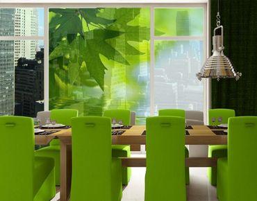 XXL Pellicola per vetri - Green Ambiance III