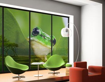 XXL Pellicola per vetri - Tree Frog