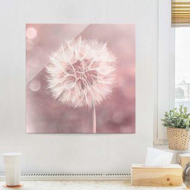 Quadro in vetro - Dandelion rosa bokeh - Quadrato 1:1