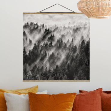 Foto su tessuto da parete con bastone - Raggi Luce nella foresta di conifere - Quadrato 1:1