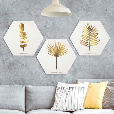 Esagono in Alluminio Dibond - Gold - foglie tropicali Set I