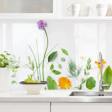 Rivestimento cucina - Fiori ed aromi I