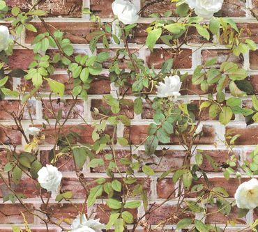 Carta da parati - A.S. Création Authentic Walls 2 in Rosso Verde Bianco