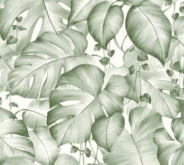 Carta da parati - Livingwalls Colibri in Verde Bianco