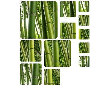 Adesivi da finestra no.524 Squares Bamboo Trees no.1 12s Set