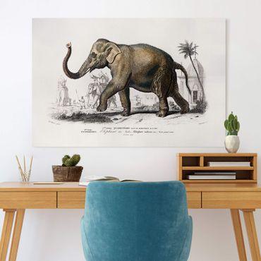 Stampa su tela - Vintage Consiglio Elephant - Orizzontale 2:3