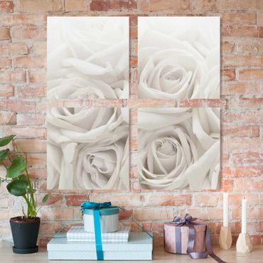 Stampa su tela 4 parti - White roses