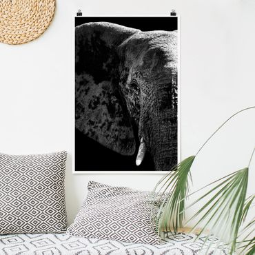 Poster - African Elephant Bianco e nero - Verticale 3:2