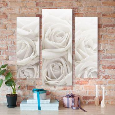Stampa su tela 3 parti - White Roses - Trittico da galleria