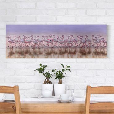 Stampa su tela - Flamingo partito - Panoramico