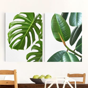 Stampa su tela - Monstera And Rubber Tree - Verticale 4:3
