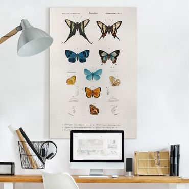 Stampa su tela - Vintage Consiglio Butterflies I - Verticale 3:2