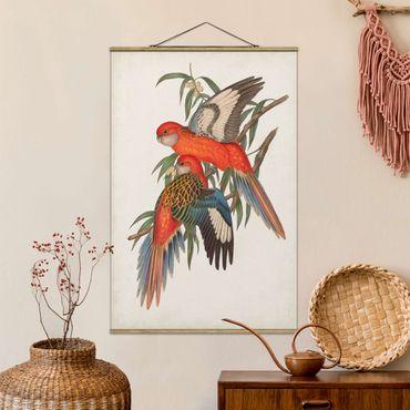 Foto su tessuto da parete con bastone - Tropical Parrot I - Verticale 3:2