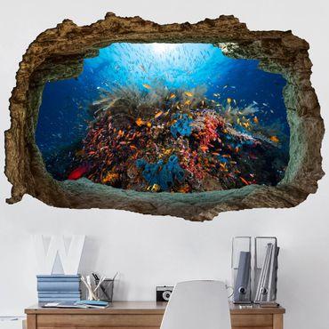 Adesivo murale 3D - Lagoon Underwater