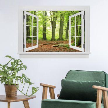 Trompe l'oeil adesivi murali - Finestra aperta Mighty Beech Trees
