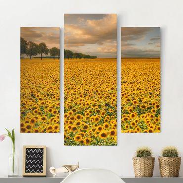 Stampa su tela 3 parti - Field With Sunflowers - Trittico da galleria