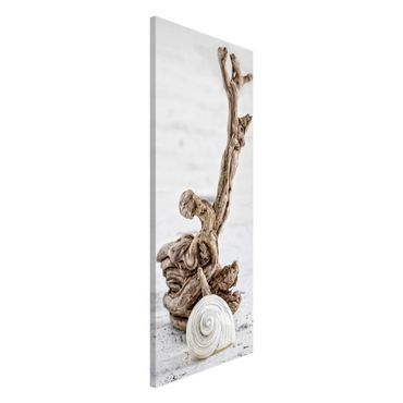 Lavagna magnetica - Bianco guscio di lumaca e Burl - Panorama formato verticale
