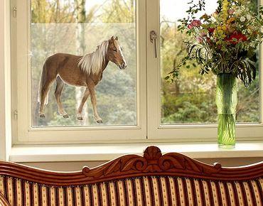 Decorazione per finestre Pony