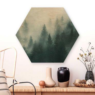 Esagono in legno - Foresta di conifere In Nebbia