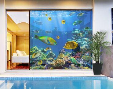 XXL Pellicola per vetri - Underwater Lights