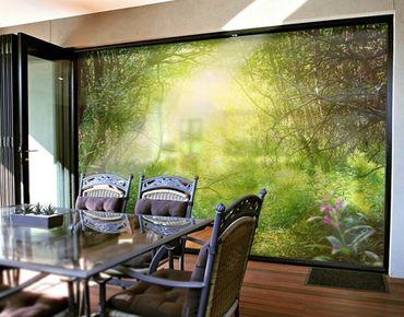 XXL Pellicola per vetri - Dream Magic Forest