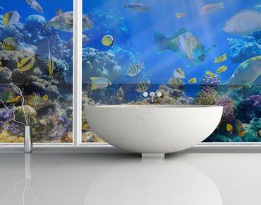 XXL Pellicola per vetri - Underwater Reef